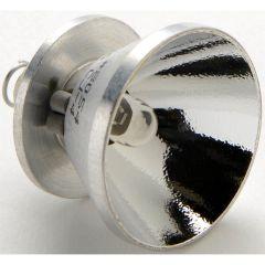 8054 Replacement Lamp Module